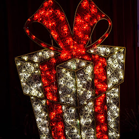 Lighted Christmas Box by Deborah Lucia - Public Holidays Christmas ( lights, red, silver, christmas, display, decorations )