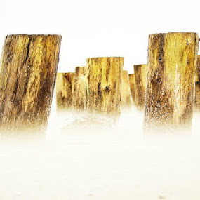 Sand Blowing Between the Pilings by Shari Sperandeo-Bell - Artistic Objects Other Objects ( relax, tranquil, relaxing, tranquility )