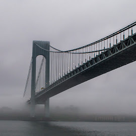by Ashleigh Mowers - Buildings & Architecture Bridges & Suspended Structures ( water, harbor, fog, new york harbor, new york, bridge, cruise, verrazano bridge,  )