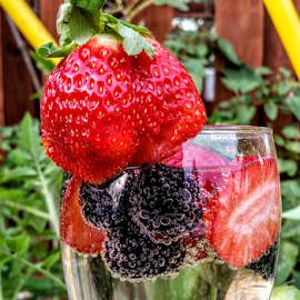 { strawberry's & Blackberry's in the tomatoe patch } by Jeffrey Lee - Food & Drink Fruits & Vegetables ( { strawberry's & blackberry's in the tomatoe patch } )