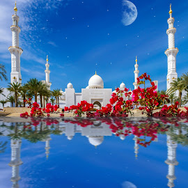 Sheikh Zayed Mosque by Jan Murphy - Digital Art Places ( water, moon, sky, mosque, trees, abu dhabi, flowers,  )