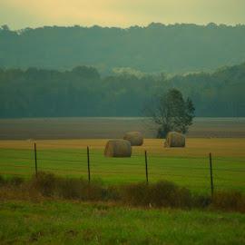 Sunrise on the hayfield by Rhonda Kay - Landscapes Prairies, Meadows & Fields
