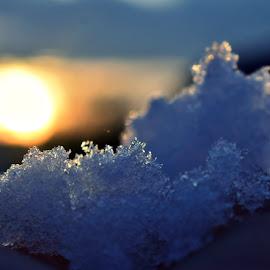 snow by Ira Mdt - Abstract Macro ( #snow #sunset #macro #lignt,  )