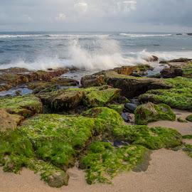by Janet Marsh - Landscapes Beaches ( slow water, beach, sunrise, rocks,  )