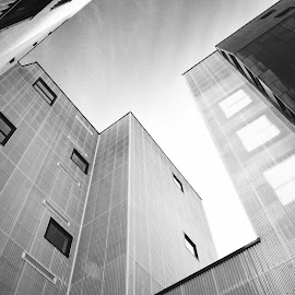 Skyhigh by Eirin Hansen - Buildings & Architecture Office Buildings & Hotels