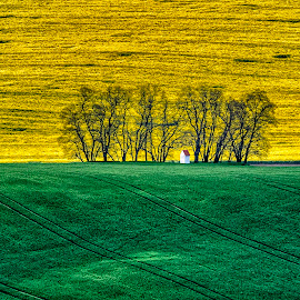 Chapel by Stanley P. - Landscapes Travel (  )