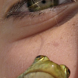 Eye of the....er, Frog by DB Channer - Animals Amphibians