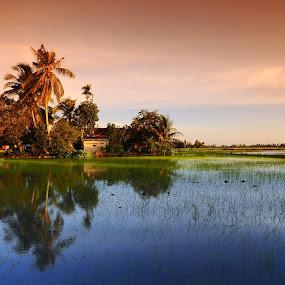 Reflection by Asrul CikguOwn - Landscapes Prairies, Meadows & Fields