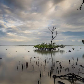 by Slamet Mardiyono - Landscapes Beaches