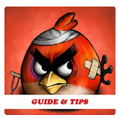 App New Angry Birds Evolution Tips APK for Windows Phone