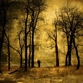 Ghost by Nicole Ulrich - Digital Art Places ( textures, layers, ghost, photoshop )