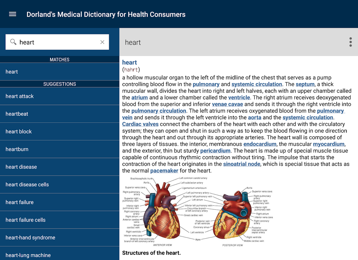 Dorland's Medical Dictionary Screenshot 16