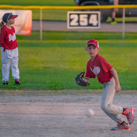 by Kevin Esterline - Sports & Fitness Baseball ( ball, play, glove, kids, game )