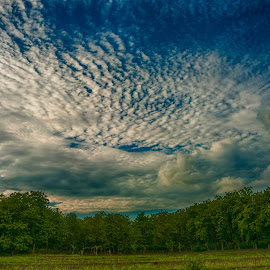 Ponorogo one by Charles Mawa - Landscapes Cloud Formations ( clouds, charlesmawa, photographer, cloudscape, cloud, landscape, photography )