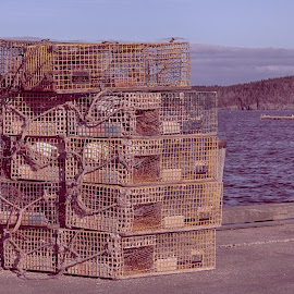 Lobster Pots At The Dock  by Lorraine D.  Heaney - Artistic Objects Industrial Objects