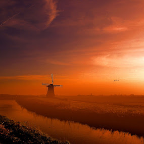 Morning Dreams by Pieter Arnolli - Landscapes Weather ( ski, bird, mill, red, europe, fog, holland, sunrise, morning )