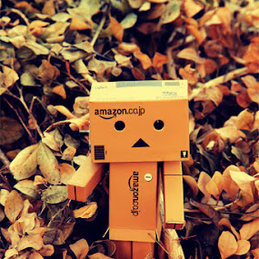 Winter Danbo by Joseph Basukarno - Artistic Objects Toys