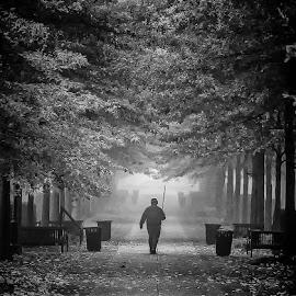 Man in the Mist by Julie Good - City,  Street & Park  City Parks ( citypark, fog, fall, man, portrait,  )