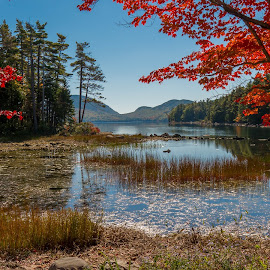 Fall Frame Lake by Dale Fillmore - Landscapes Waterscapes ( fall colors, color, reflections, scenic view, mountain view frame, lake )