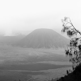 bromo mountain by Gunarsa Gunarsa - Landscapes Mountains & Hills ( black and white photograpy, aep gunarsa, fine art, bromo )