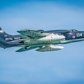 SEA VIXEN G-CVIX XP924 by Anthony P Morris - Transportation Airplanes ( seavixen, sea vixen g-cvix xp924, anthony morris, oxforshire, oxford, anthonypmorris, farmoor, eastbourne )