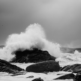Vigdel by Andreas Anderson - Landscapes Beaches ( blackandwhite, black and white, waves, wave, ocean, landscape,  )