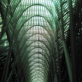 by Justin Dart - Buildings & Architecture Other Interior ( building, sky, green, toronto, inside )