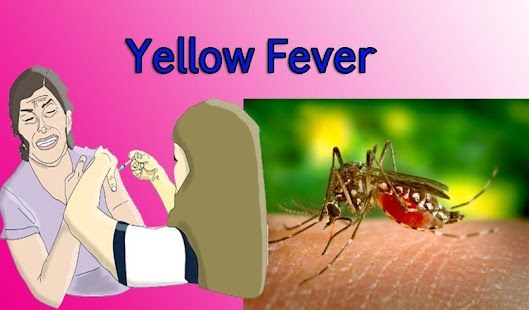 Yellow Fever - screenshot