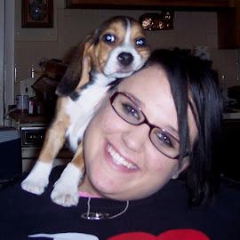Puppy Love by Sandy Stevens Krassinger - Animals - Dogs Puppies ( love, hug, puppy, beagle, dog )