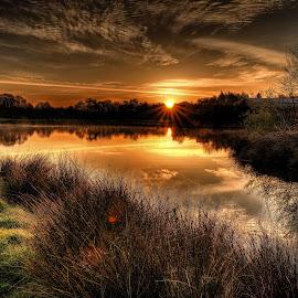 Loch Jess, Annbank sunrise by Stephen Crawford - Landscapes Sunsets & Sunrises ( clouds, water, tranquil, peaceful, warm, grass, locj jess, trees, fishing, sunrise, pond, annbank,  )