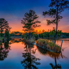 Pungo River Sunset by Robert Mullen - Landscapes Sunsets & Sunrises ( belhaven, sunset, sundown, bath, reflections, trees, waterscapes, pungo river, river )