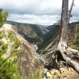 The Painted Canyon by Molly Marie - Landscapes Mountains & Hills ( yellowstone, river )