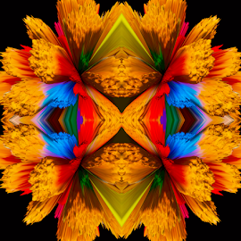 by Kris Pate - Digital Art Abstract ( abstract, orange, creation, colorful, green, pixoto, image, yellow, digital, photography, colours, colour, colourful, red, blue, color, digital art, black, design )