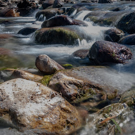 Frozen in time by Akashneel Banerjee - Nature Up Close Water ( water, reflection, stream, nature, rocks )