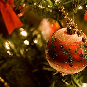 Christmas by Philip O'Brien - Public Holidays Christmas ( lights, ball, red, pwcholidays, tree, decorative, decoration, bulb, christmas, branch, noel, shiny,  )