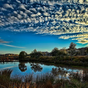 Lush sky by Peter Cannon - Landscapes Waterscapes ( water, clouds, sky, blue, waterscape, lake, landscape )