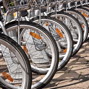 by Louis Heylen - Transportation Bicycles