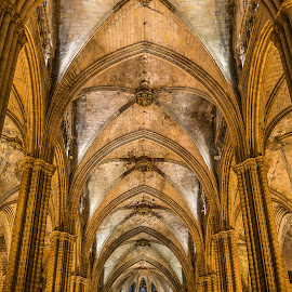 Barcelona Cathedral by Angela Higgins - Buildings & Architecture Places of Worship