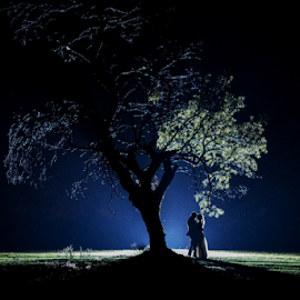 Night Tree by Lood Goosen (LWG Photo) - Wedding Bride & Groom ( wedding photography, wedding photographers, wedding day, weddings, wedding, bride and groom, wedding photographer, bride, groom, bride groom )