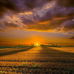 Good Morning by Phil Koch - Landscapes Prairies, Meadows & Fields