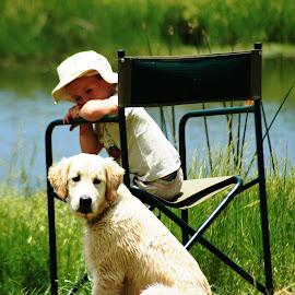 by Jack Mckechnie - Animals - Dogs Puppies (  )
