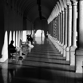 Ringling Sarasota  by Jeremy Barton - Buildings & Architecture Other Interior ( florida, art, museum, ringling sarasota, man, pillars )