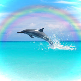 Dolphin Leap by Ingrid Anderson-Riley - Digital Art Animals