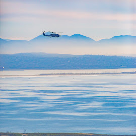 Helicopter hovering over San Diego Bay by Jason Finn - Transportation Helicopters ( famous, copy space, mountain, bright, phone background, ecosystem, land, travel, beach, usa, coast, exploration, adventure, conservation, road trip, travel destinations, climate, helicopter, water, california, colors, minimalism, backgrounds, white, tourism, habitat, magazine cover, blue, textured, outdoors, day, lifestyles, telephoto )