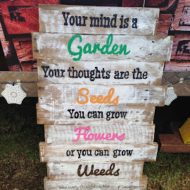 Your Mind is a Garden by Dawn Simpson - City,  Street & Park  Markets & Shops ( sign, wooden, verse, markets, proverb )