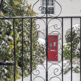 Red Door by Wendy Richards - Buildings & Architecture Homes ( red, snow, gare, exeter )