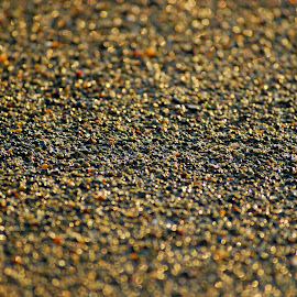 by Pixie Simona - Nature Up Close Sand ( glowing sand, sand, glow, glitter, golden hour,  )