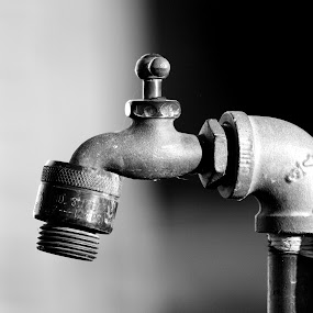Faucet by Virginia Folkman - Artistic Objects Other Objects ( faucet )