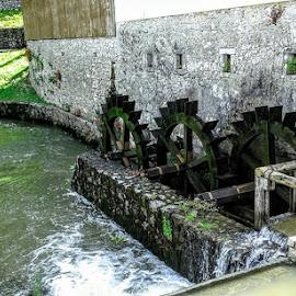 Postoijna Slovenia by Carmen Kovacs - Buildings & Architecture Places of Worship