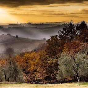 by Lorenzo Moggi - Landscapes Prairies, Meadows & Fields